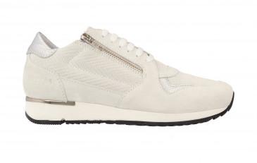 Women Low Cut Sneaker