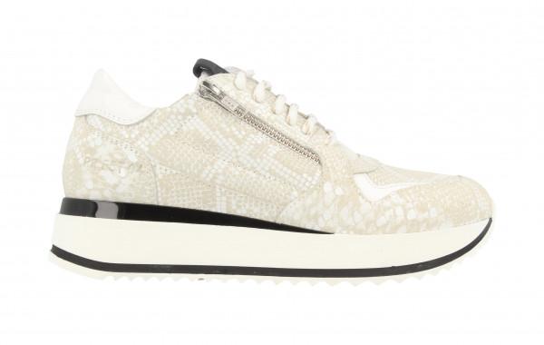 76704 | Women Low Cut Sneaker