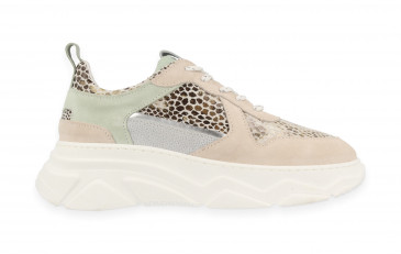 77064 | Women Low Cut Sneaker