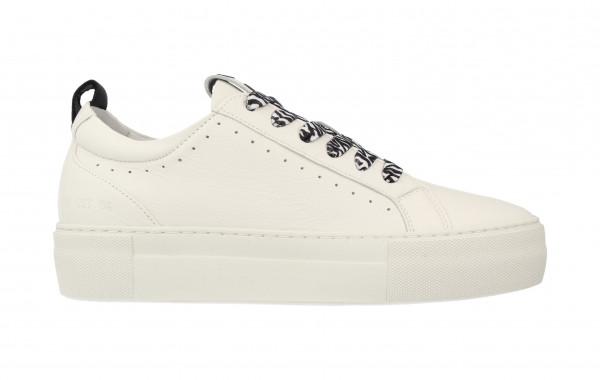 74308   Women Low Cut Sneaker