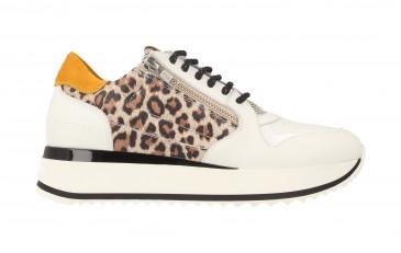 76702 | Women Low Cut Sneaker