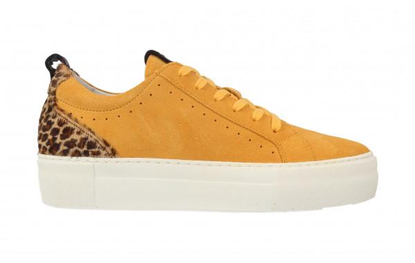 74314 | Women Low Cut Sneaker